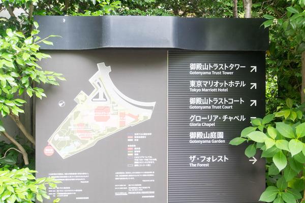東京-190605110