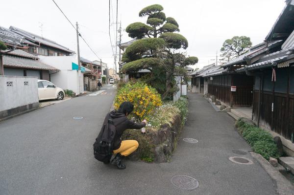 20160404藤阪1-304