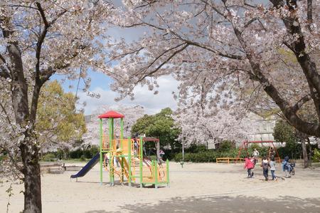 出口ふれあい公園-5