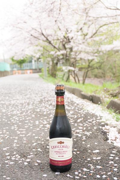 20160404藤阪1-128