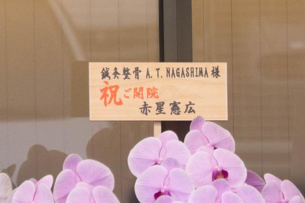 NAGASHIMA-1710205