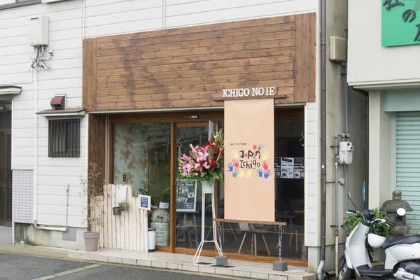 ジャパンイチゴ-1605102