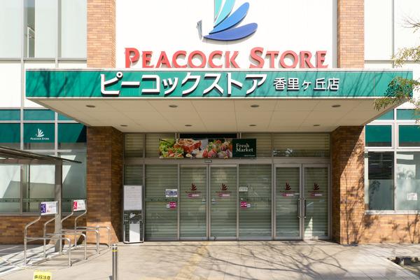 ピーコック-16030304