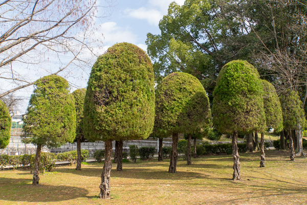 中ノ池公園-20021922
