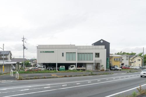 ふじもり動物病院-15060903