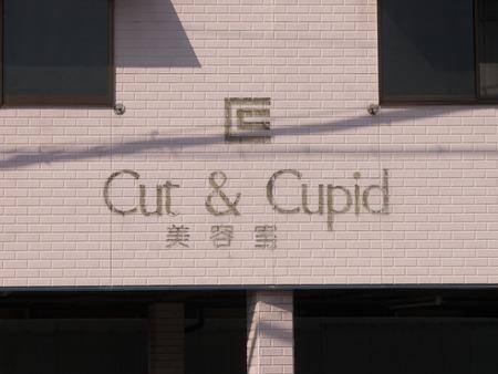 CUT&CUPID-1402242