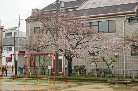 伊加賀公園-3
