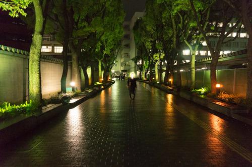 山名さん-15121001