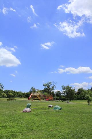 山田池公園120717b-藤山おこめつぶ