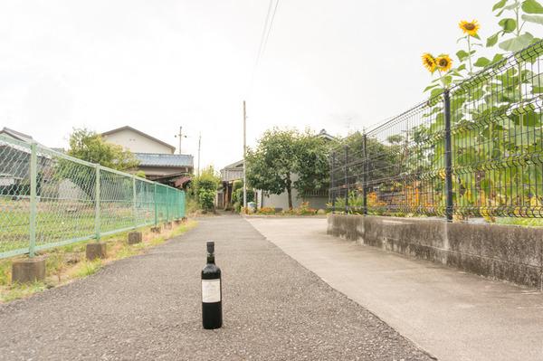 光善寺ワイン後編-35