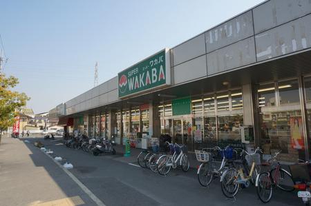 スーパーワカバ山田池店130306-07