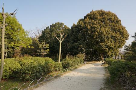 香里ケ丘中央公園-11