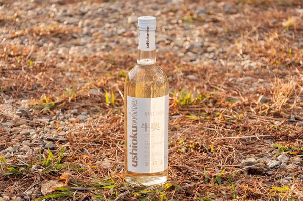 宮之阪ワイン-73