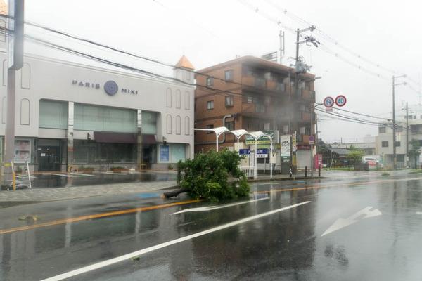 台風21号-18090441