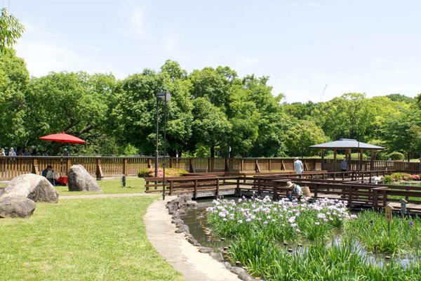 山田池公園-1805258
