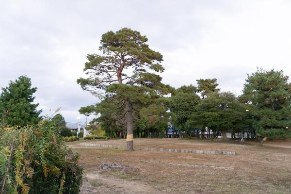 宮之阪-177