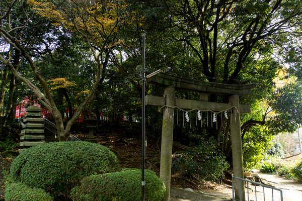 意賀美神社-15122401