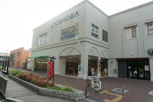 nobunaga-16