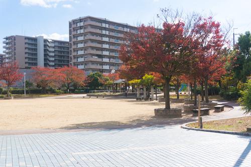 出口ふれあい公園-1511118