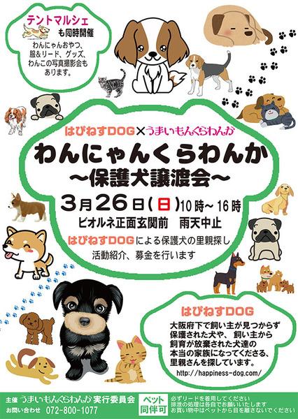 20170326_wan_nyan_kurawanka