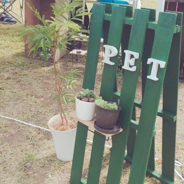 PET-2