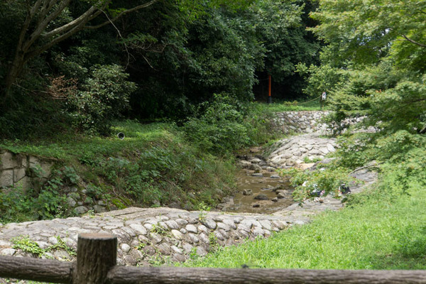 源氏の滝-1707263