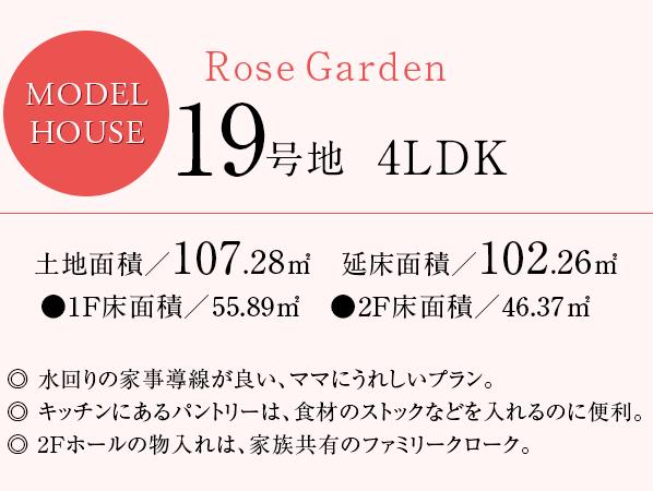 rose_19_txt
