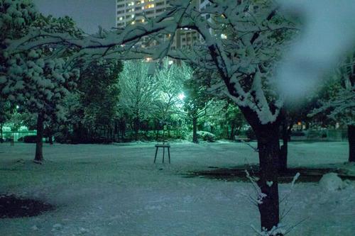雪の正月-19