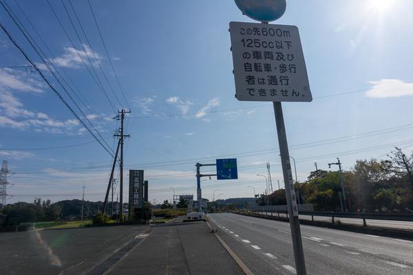 東海道8日目-19112511