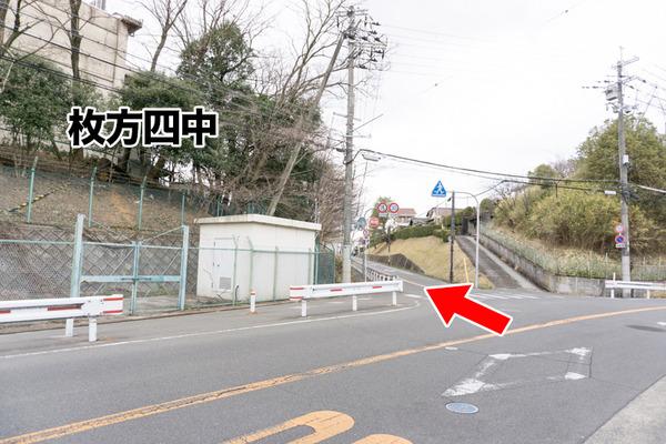ペットコロニー香里ケ丘店-ドッグサロン-93
