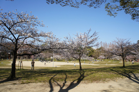 楠葉東公園110406-05
