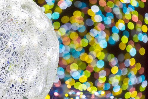 ひらかたパーク光の遊園地-151111168