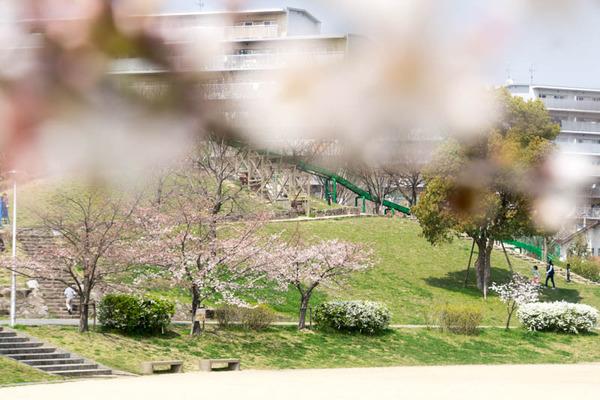 交北公園-1803261