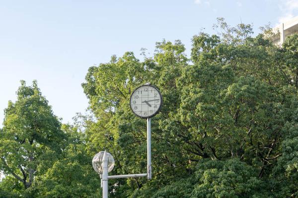 薬師谷公園-1810014