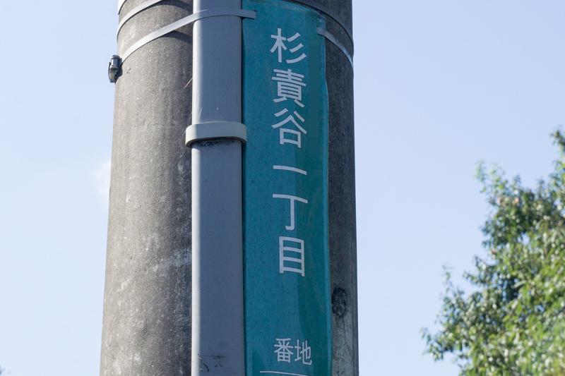 杉責谷-15101401