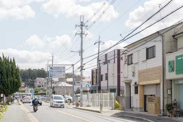 JAPANICHIGO-16032602