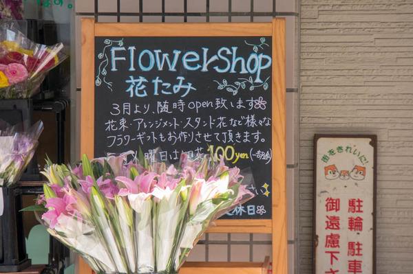 花屋-1804106