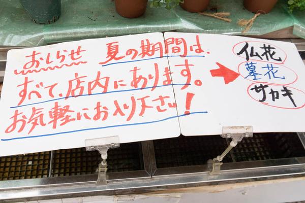 sakuranbo_通常_小-20200717-19