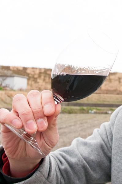 長尾ワイン後編-76