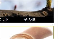 20110401maikata10