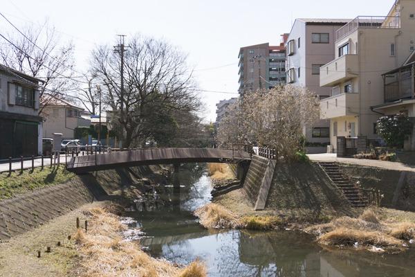 松戸-46