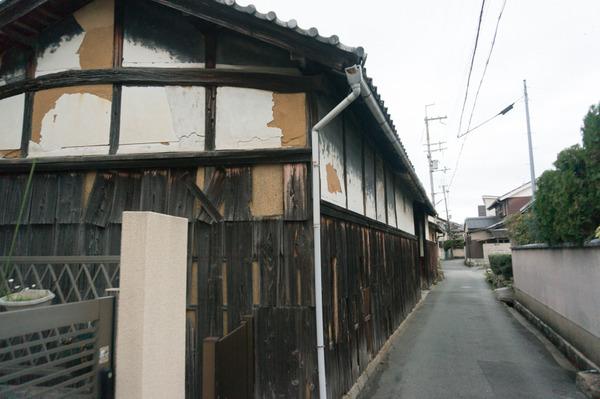 20160404藤阪1-344