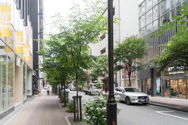 東京-19060570
