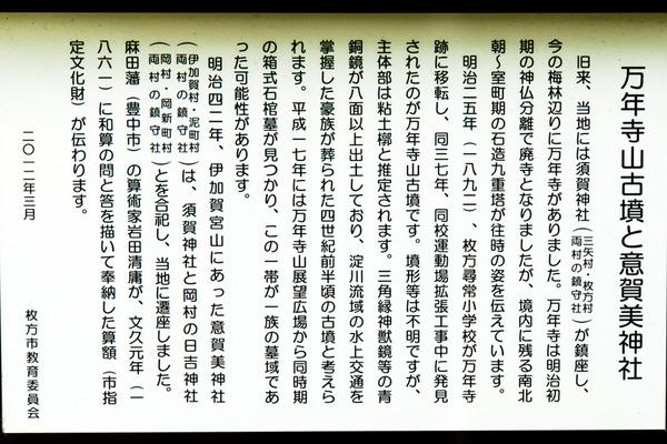 意賀美神社-15122403