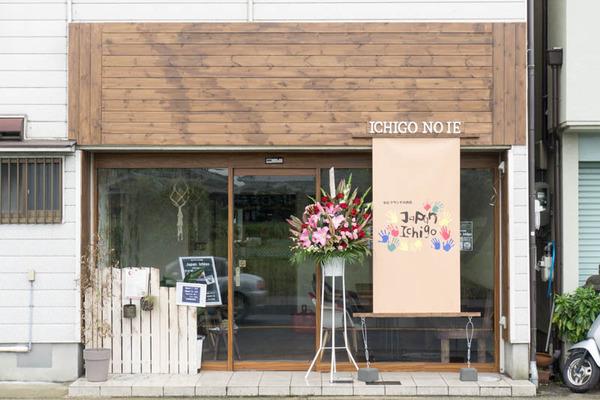 ジャパンイチゴ-1605105