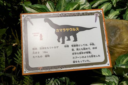 ひらパー恐竜大冒険-42