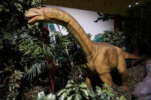 ひらパー恐竜大冒険-43