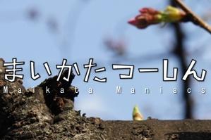 20110401maikata1