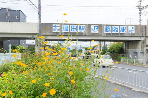 東倉治-3