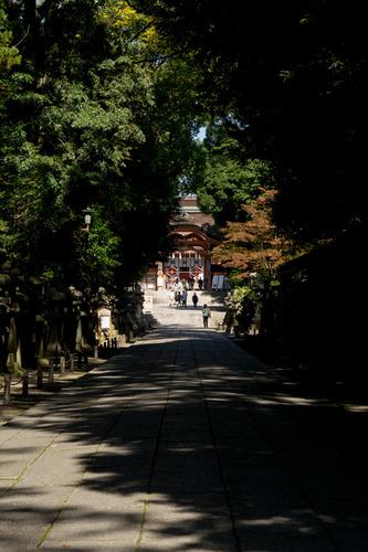 石清水八幡宮-15101907